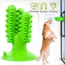 Load image into Gallery viewer, Suction Cup Dog Toy Cactus - VITSCAN