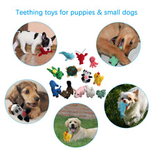 Load image into Gallery viewer, 12 pack  Cute Soft Pet Toy LEGEND SANDY - VITSCAN