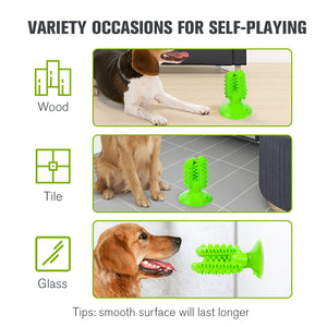 Suction Cup Dog Toy Cactus - VITSCAN