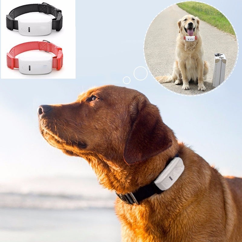 Proximity GPS Pet Dog Cat Location Tracker with FREE IOS APP