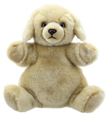 P101-PC009504-marionnette-Chien-Labrador-The-Puppet-Company-Cuddly-Tumms