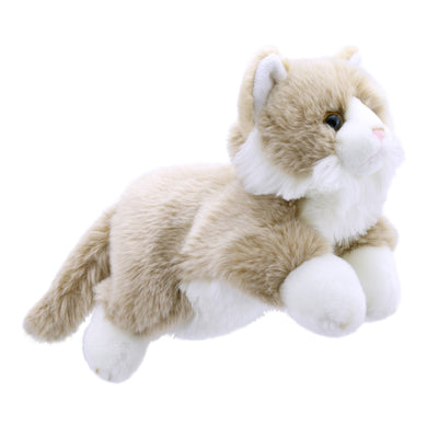 P276-PC001828-marionnette-Chat-Beige-et-Blanc-The-Puppet-Company-Full-Bodied-Animal-Puppets