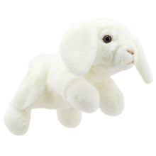 Charger l'image dans la galerie, P295-PC001829-marionnette-Lapin-Lop-Eared--Blanc-The-Puppet-Company-Full-Bodied-Animal-Puppets