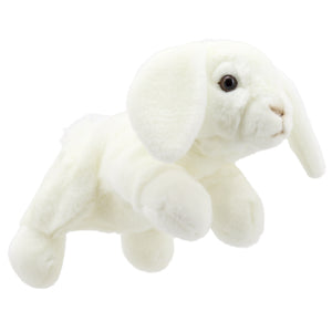 P295-PC001829-marionnette-Lapin-Lop-Eared--Blanc-The-Puppet-Company-Full-Bodied-Animal-Puppets