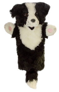 P352-PC006006-marionnette-Border-collie-The-Puppet-Company-Long-Sleeved-Glove-Puppets