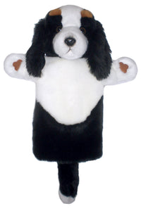P370-PC006053-marionnette-King-Charles-Spaniel-The-Puppet-Company-Long-Sleeved-Glove-Puppets