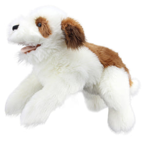 P456-PC003008-marionnette-Chien-marron-et-blanc-The-Puppet-Company-Playful-Puppies