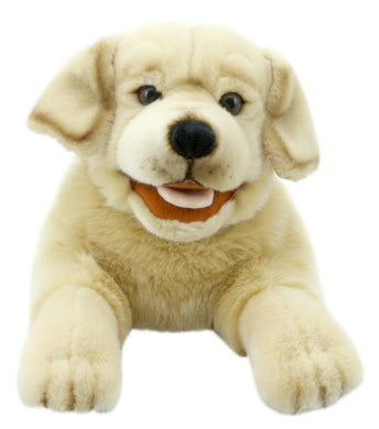 P457-PC003009-marionnette-Labrador-jaune-The-Puppet-Company-Playful-Puppies