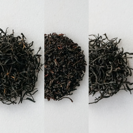 Black Tea Tasting Box