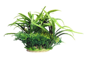 Ecoscape Small Crinum Green