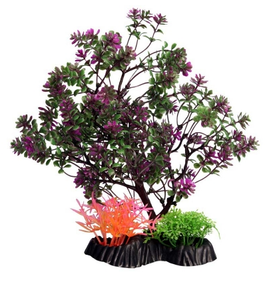 Ecoscape Medium Catspaw Tree Purple