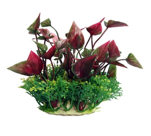 Ecoscape Small Lily Red