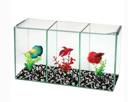 AQUA ONE Betta Trio Cube Glass W Lid 36x12x20cm -07204