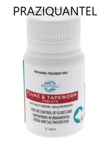 Blue Planet Fluke & Tapeworm Tablets 25PK
