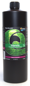 Intensity Fe 1000mL