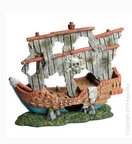 Ruined Small Pirate Ship