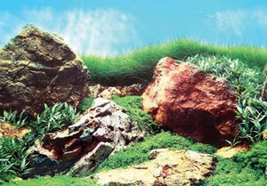 AQUA ONE Background 48cm Stone & Grass Land