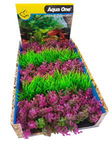 Ecoscape Foreground Catspaw R/lilaeopsis GN Mix Punnet 5pk Dis Box