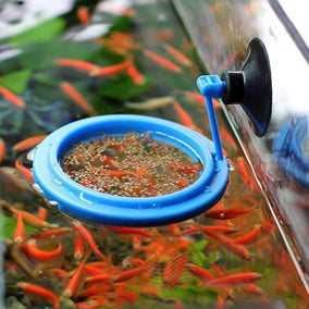 #fish feeding ring
