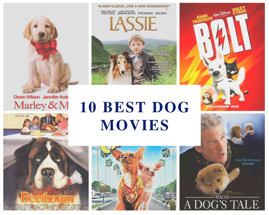 Best Dog Movies