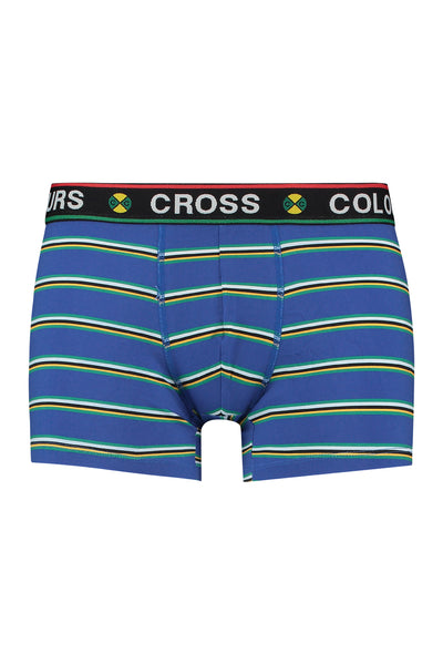 Prep Stripe Boxer Brief - Blue Multi