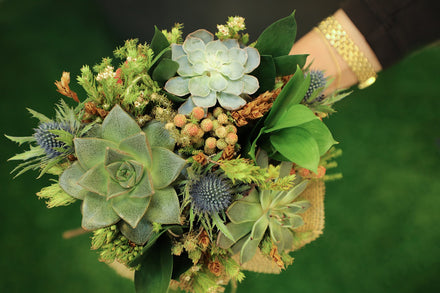 Making Succulent Wedding and Bridal Bouquets