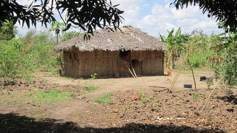 A typical farming family's house in Chumbi | Image Courtesy acainitiative.org