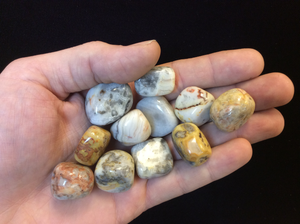 Crazy Lace Agate Tumbled