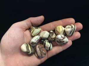 Zebra Jasper Brown Tumbled