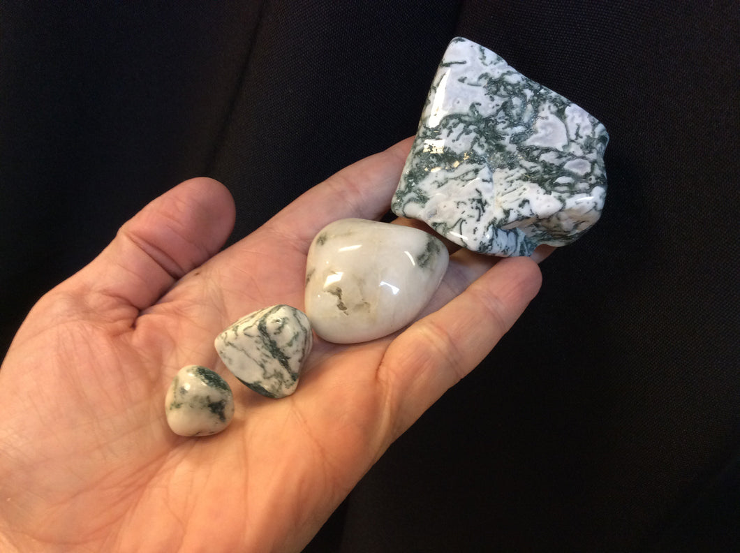 Green Tree Dendritic Agate Tumbled Small