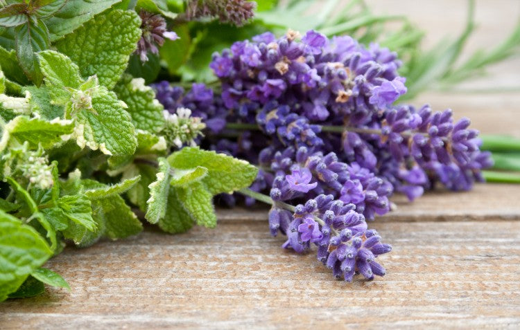 mint-and-lavender