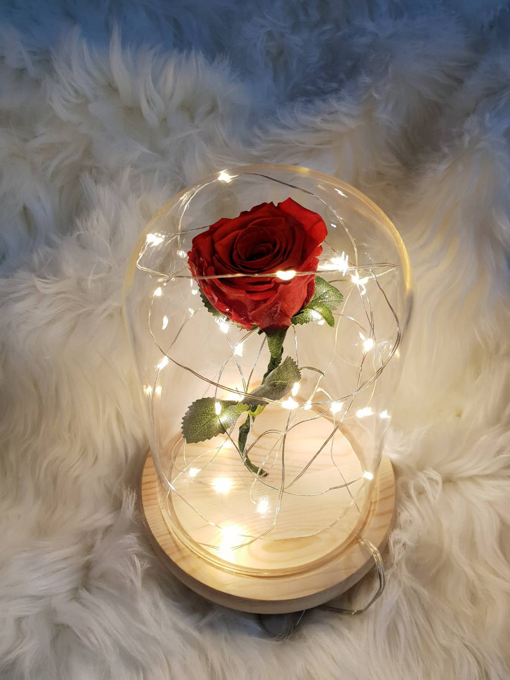 Enchanted Rose Glass Dome - Happy Florals