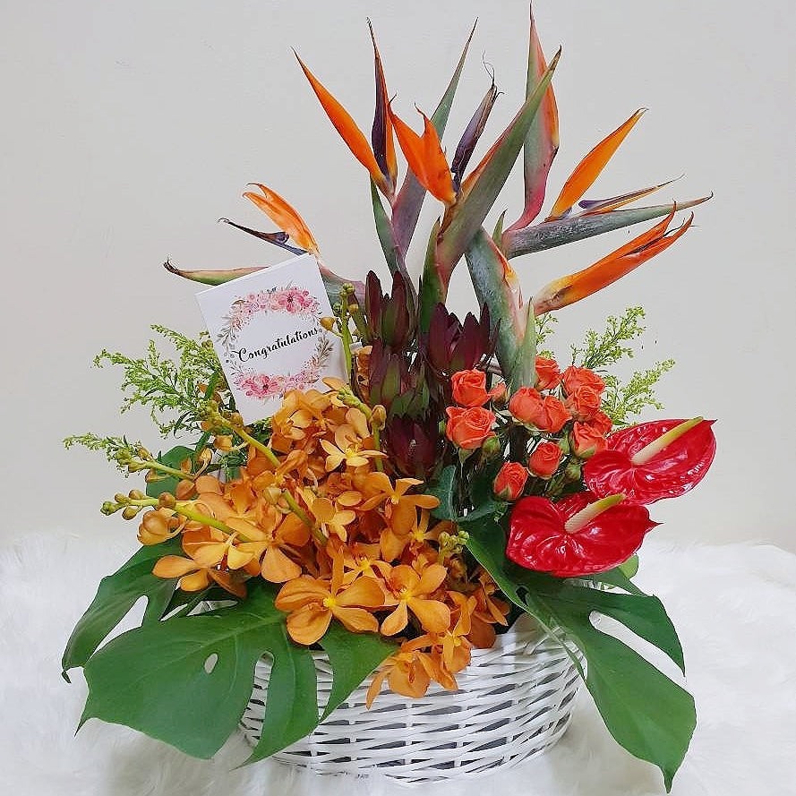 Grand Opening Flower Basket (Tropical) - Happy Florals
