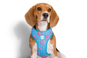 Zee Dog Air Mesh Harness - Homer