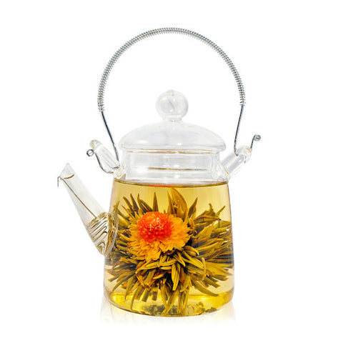 Red Chrysanthemum Tea Blossom