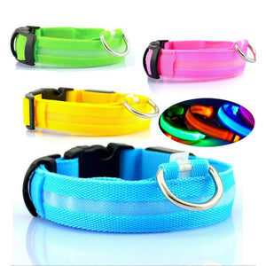 Glow-In-The-Dark LED Safety Dog Collar GIVEAWAY