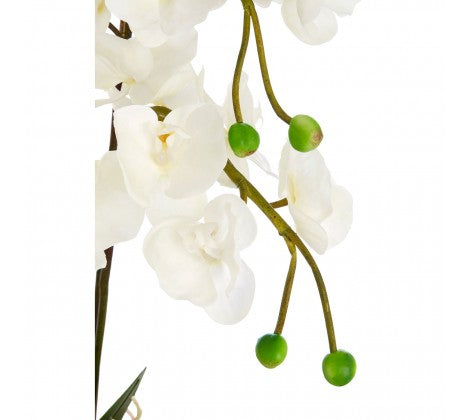 WHITE ORCHID PLANT WITH SILVER CERAMIC POT 60cm