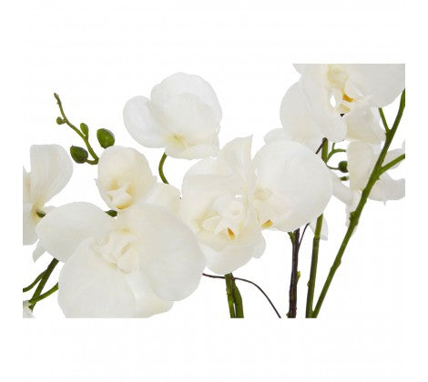WHITE ORCHID PLANT WITH GOLD CERAMIC POT 45cm