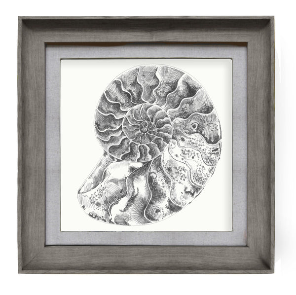 Voyage Maison Stone Ammonite Framed Picture