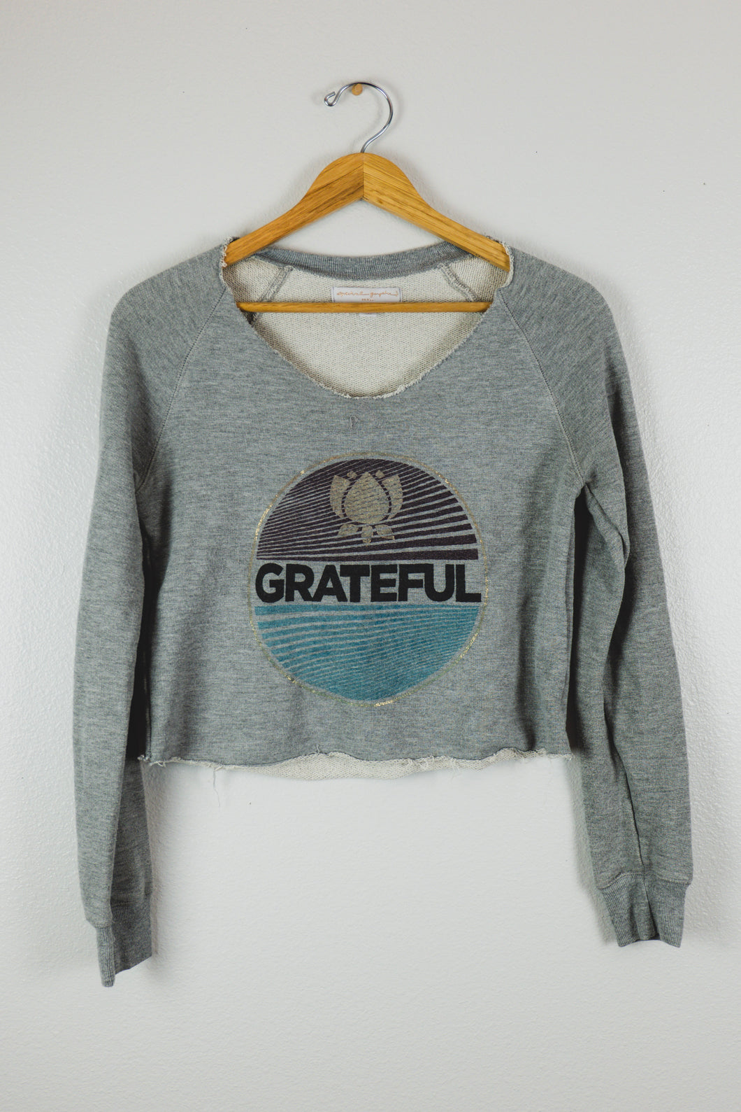 Crop Grateful Bee Sweater