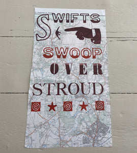 Swifts swoop over Stroud