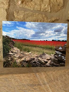 Poppy field greetings card (cot cards)