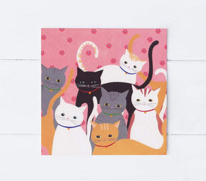 Hello cats greetings card (Summer)