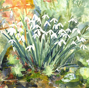 Late snowdrops greetings card (Alison)