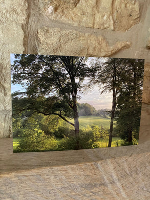 View of Painswick greetings card (cot cards)