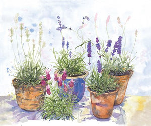 """Lavender Garden"" post card (Alison)"