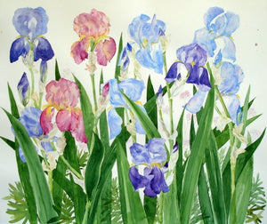 """ Irises"" Greetings card"