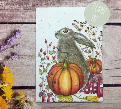 Plantable hare and pumpkin greetings card (Erika)