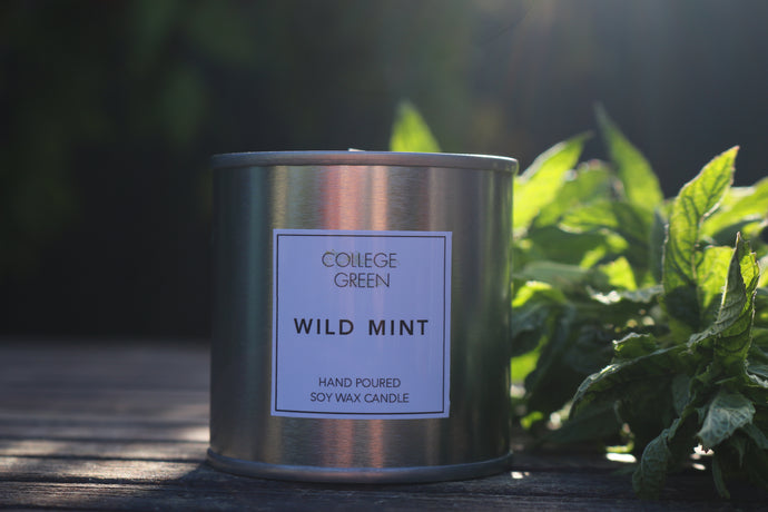 Wild mint scented candle                                                                     College green