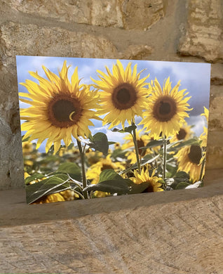 Bruern sunflowers greetings card (Cots cards)